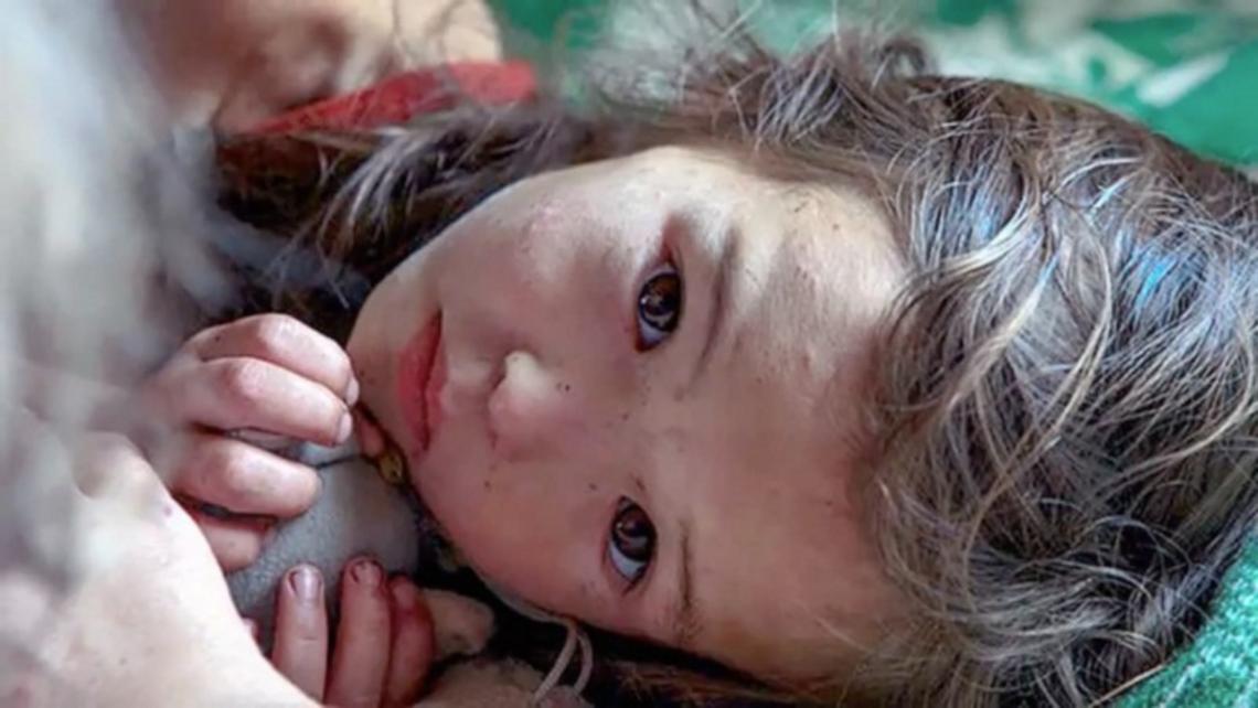 11日間森の中を彷徨い続けた3才の少女。少女の側を離れず、救助隊を導いたのは◯◯だった!?