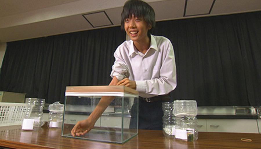【衝撃】16歳の高校生が「蚊に刺されやすい妹」を独自に研究した結果…世界的大発見!