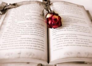 book-419589_1280