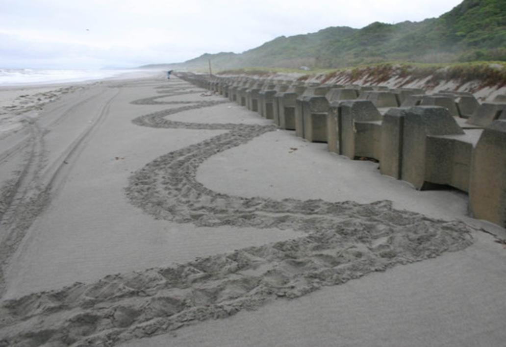 海岸に残された足跡が伝える「悲しいメッセージ」・・・この足跡が意味するものがわかりますか?