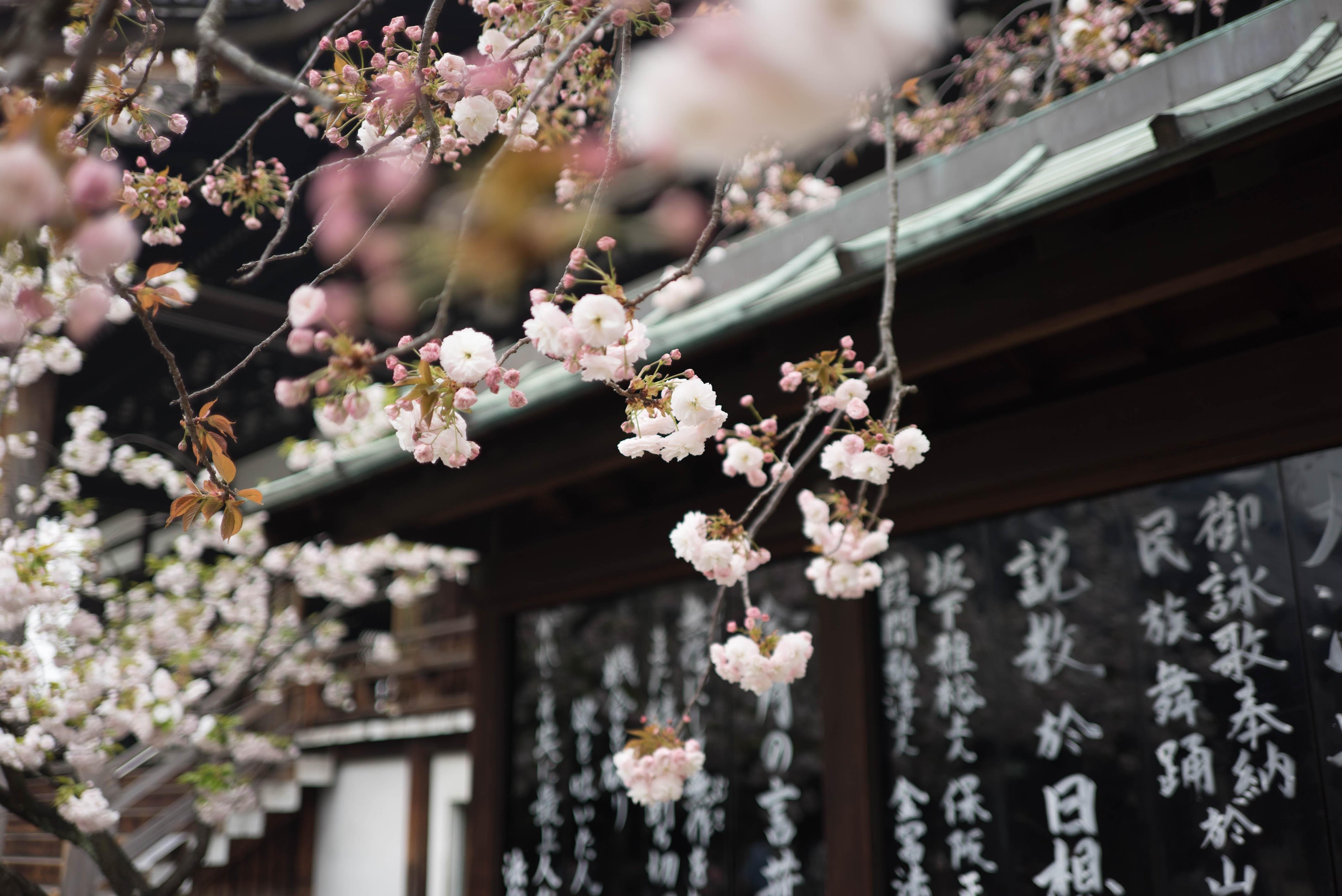 米バイデン副大統領が「日本が本気出したら、中国は一瞬でやられる」とコメントした根拠とは?