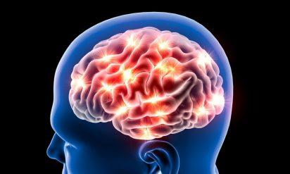 仮病なのにレントゲンを撮ったら脳にとんでもないものが!医者も青ざめた事実が判明!!