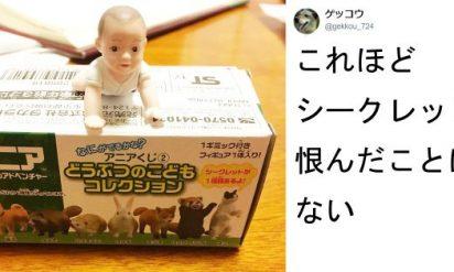 確かに「動物の子供」だけど‥私が求めてたものはコレじゃなぁぁぁい!!TOP7