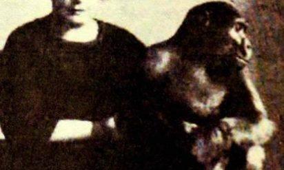 男性はゴリラを購入し、妹と生活させた。その後の運命を誰一人予測できなかった。