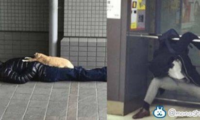 日本って平和すぎ!?酔っ払って爆睡している人たちの姿12選!想像をはるかに超えてる‥