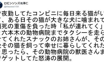 【ミラクルな瞬間を刮目せよ!】奇跡バンザイ!みんなの笑顔はじけるラッキー事変 6選!