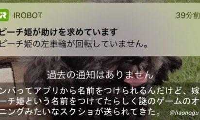 【嫁がルンバに「ピーチ姫」と名前をつけた結果(笑)】「可愛いから全部許す!」→愛すべき妻の天然エピソード 6選!