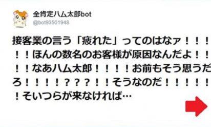 【ズバッと一言物申す!今を生きる人間ってのはな・・・】そうだそうだ、その通りなのだ!「全肯定ハム太郎bot」がスカッと10選!