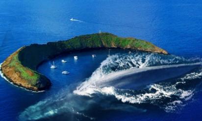 【閲覧注意】足を踏み入れるべきではない、危険すぎる島10選