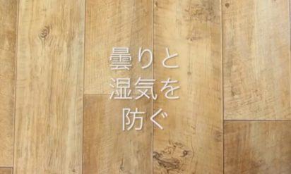 【豆知識】乾燥剤は捨てないで!この動画を見たらわかる(※動画あり)
