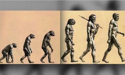 【衝撃】人類進化の真理「進化論」は嘘だった!?人は猿から出来ない理由とは・・・。